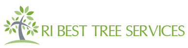 RI Best Tree Services